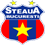 ستيوا بوخارست